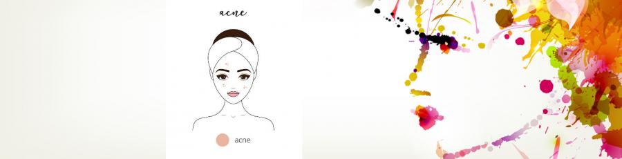 Gertraud Gruber Kosmetikprodukte Akne-Haut Online bestellen